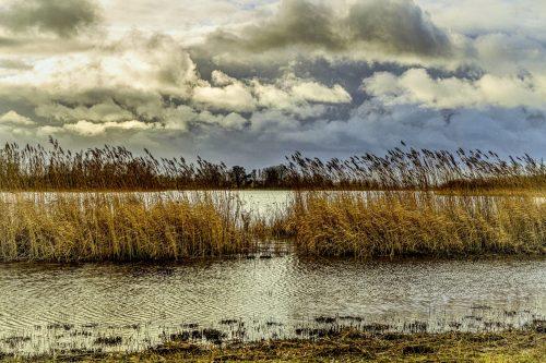 Biesboschkamer-Dick-Jeukens-0084-C019-0-1